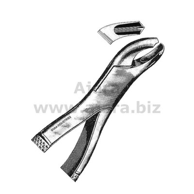 Tooth Extracting Forceps American Pattern fig.18 R